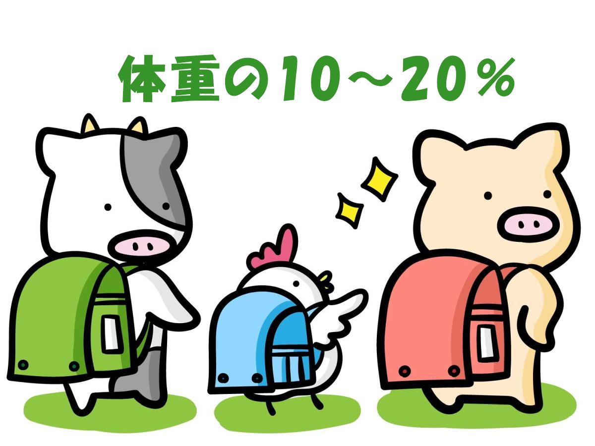 ランドセルの重さは体重の10~20%を限度に。ランドセルと教科書の重さが子供の身体に与える影響。